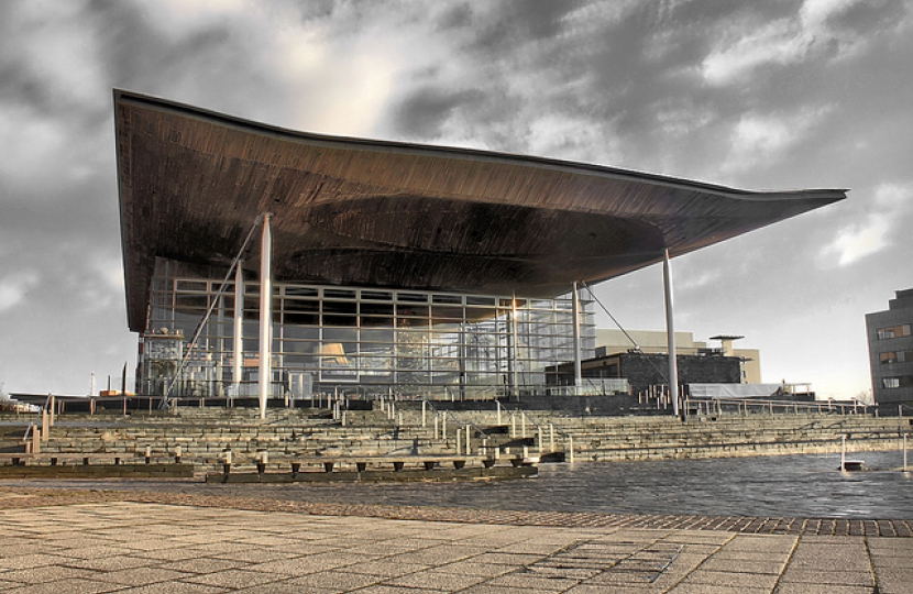 Call For More Ams As Welsh Assembly Celebrates 20 Years Janet