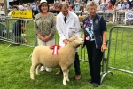 Janet at Royal Welsh with dorset down winner